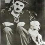 Texto de Charles Chaplin – Ótimo. Reflexão Charles Chaplin. Crônica Charles Chaplin.