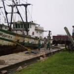 Ibama apreende duas embarcações e doa 4.000 kg de peixes em Rio Grande