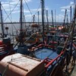 Sergipe – Pescadores de camarão voltam às atividades
