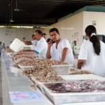 Ubatuba – Prefeitura abre cadastro para pescadores usarem o Mercado de Peixes