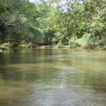 Blitz flagra pescadores e aplica um total de R$ 22 mil em multas em Ibitinga