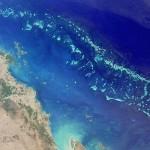 Proibição de pesca recuperou vida marinha em Grande Barreira, diz estudo