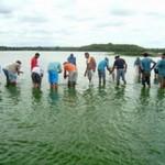 Alagoas – Seagri faz peixamento com mais de 12 mil alevinos em açude