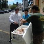 Ibama doa 400 quilos de camarão apreendido em Curitiba