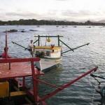 Ibama deflagra a Operação Tsunami em Santa Catarina
