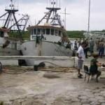Ibama apreende 11 toneladas de pescados no litoral do Paraná