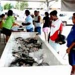Cuiabá – Prefeito enaltece sucesso do Peixe Santo