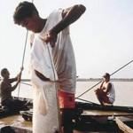 Pescadores discutem melhorias da pesca no Amazonas