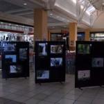 Osasco Plaza Shopping recebe 6ª Mostra de Fotografias do Meio Ambiente