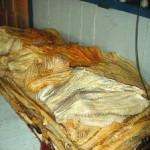Ibama apreende duas toneladas de pescado no Amazonas