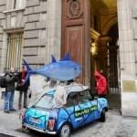 Greenpeace bloqueia ministério em Paris por atum vermelho