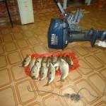 PMA prende pescador no Rio Paraná