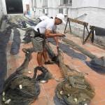 Pelotão Ambiental realiza a maior apreensão de crustáceos do ano na Lagoa dos Patos