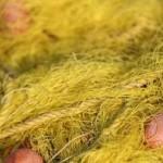 Apreensão de vários artigos de pesca em Quissamã