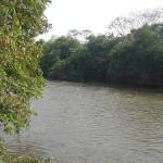 Sema realiza operação de fiscalização na região Oeste do Estado de Mato Grosso
