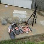 Ibama e PMA flagram pesca ilegal no pantanal norte