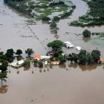 Parecer técnico vai embasar pedido de estado de  emergência para o Pantanal