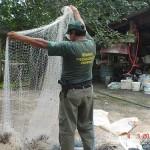 Operação Piracema do Ibama e PMA flagra pesca predatória e apreende armas