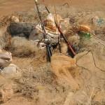 Operação no rio Araguaia fortalece o Sisnama em Goiás