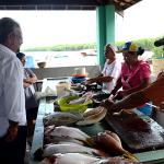 Deputado pede intervenção de Solla na saúde de marisqueiras na Bahia