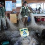 Naturatins – Fiscalização coíbe pesca predatória e o desmatamento ilegal