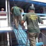 Amazonas – Ibama alerta para o início do defeso da Piracema