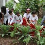Escolas de Osasco desenvolvem projeto de Horta Orgânica